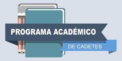 pograma-academico-home