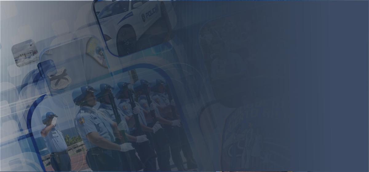 general-slider-police-background